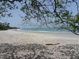 Uno scorcio di paesaggio in Guinea Bissau
