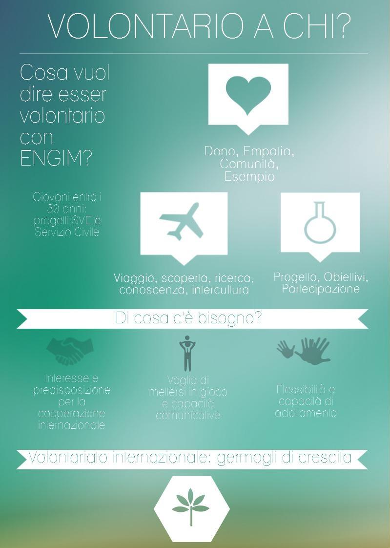 Infografica volontariato