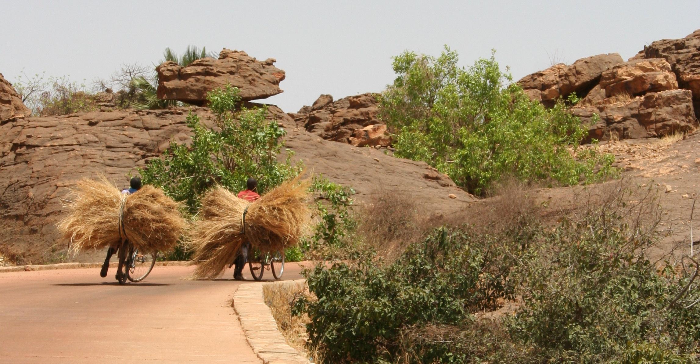 Mali Apr. 2009 (124)